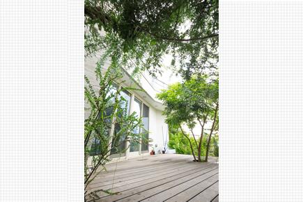 1階のウッドデッキ。緑が豊かに繁って心を癒してくれる